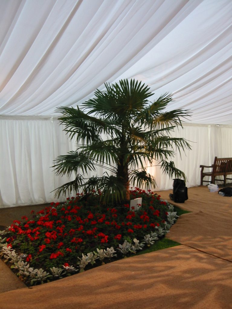 Frame Marquee Incorporating Garden Feature